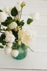 white peonies | Camille Styles