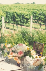 wedding toast vineyard reception
