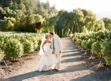 wedding portraits in a vineyard