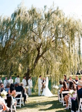 wedding under a weeping willow