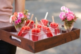 passed-popsicles-wedding-10