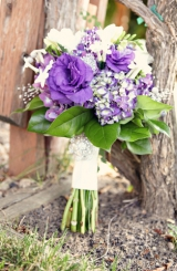 Purple Vineyard Wedding_Ampersand Studios_003
