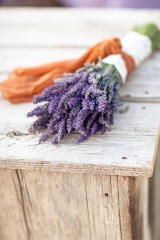 lavender styled shoot | Amy Lashelle Photography-11