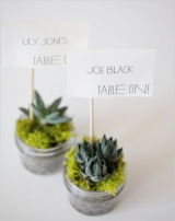 cactus wedding ideas