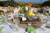 Green & Yellow California Ranch Wedding 24