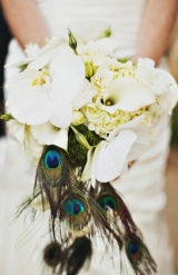 white orchid hydrangea and calla lily bride's bouquet with peacock feather accents very romantic bri