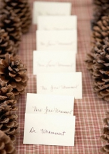 pine cone decor, place cards, red and green table cloth, winter inspiration, nature inspiration, rus