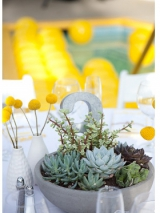 Succulant wedding centerpieces