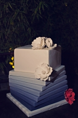 Blue and white wedding cake, leigh miller photography, floral detailed wedding cake, fondant wedding