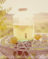 Simply Bloom photography, lemon decor, outdoor wedding reception, summer wedding inspiration, vintag