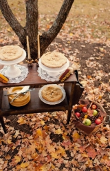 Fall wedding inspiration, fall wedding ideas, harvest season weddings, wedding day apples