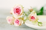 rose wedding flowers, pink wedding flowers