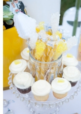 erin hearts court photography, dessert table, sweets table inspiration, wedding candy inspiration, y