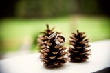 Rings on Pinecones