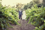 vineyard wedding inspiration, Bernardo Winery, San Diego, CA, California