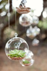 succulant wedding ideas