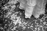 wedding bride dress confetti