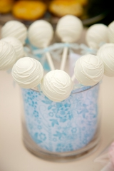 Dan Cutrona Photography, cake pops, garden party