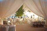 tree wedding inspiration, outdoor wedding inspiration, natural wedding inspiration, white wedding de