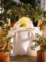 Lemon inspired wedding reception