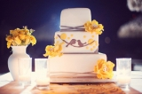 Bird themed wedding cake, stephanie williams photography, yellow and brown fondant wedding cake
