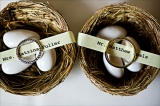 Birds nest wedding favors