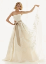 Strapless Satin Organza Gown with Antique Lace