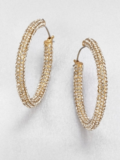 Pav Stone Accented Hoop Earrings