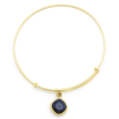 Dark Indigo Truth Charm Bangle