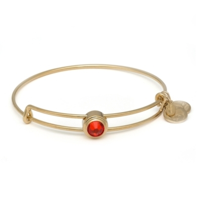 Hyacinth Energy Sacred Studs Bangle