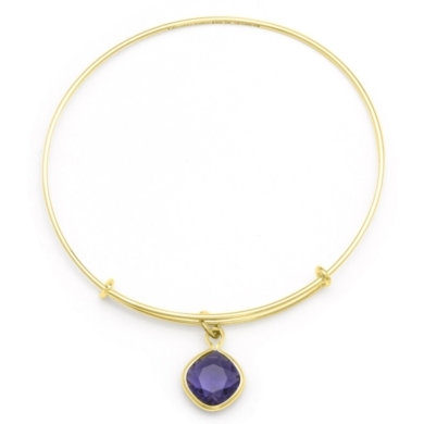 Purple Velvet Spirituality Charm Bangle