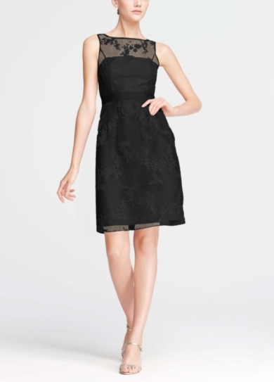 Short Sleeveless Organza Dress with Embroidery