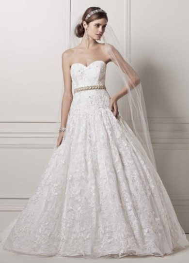 Strapless Ball Gown with All Over Lace Appliques
