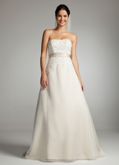 Strapless Lace Bodice with Organza A-Line Skirt