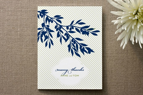Olive Branch Thank You Cards by J Press Designs