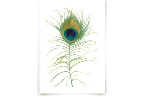 Ruffled Feather Art Prints