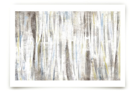 Serene Forest Art Prints
