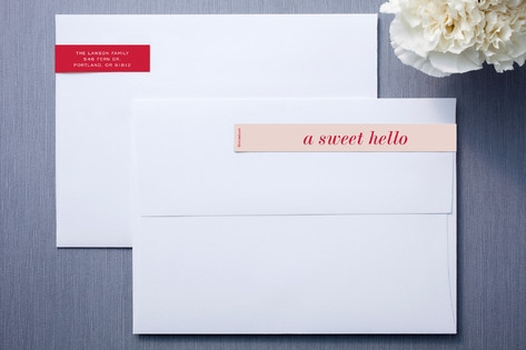 Short and Sweet Skinnywrap Address Labels