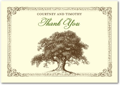 Tree Tale Signature Ecru Thank You Cards Ivy